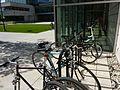 Bike rack (3664136173).jpg
