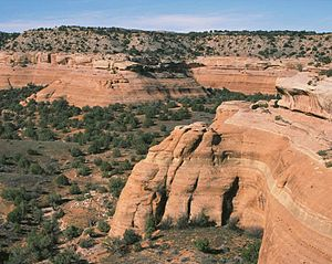 Black Ridge Canyons Wilderness - View of BRCW from the Pollock Bench trailhead