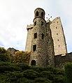 Blarney Castle-16-2017-gje.jpg
