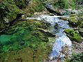 Bled (14886428063).jpg