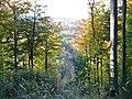 Blick über das Krumbachtal - panoramio.jpg