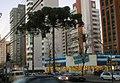Blockbuster em Juvevê - Curitiba.jpg