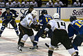 Blues vs Ducks ERI 4654 (5472475405).jpg