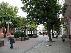 Bobruisk city view1 BY.jpg