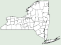 Boltonia asteroides var recognita NY-dist-map.png