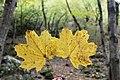 Borjomi Kharagauli National Park (9).jpg