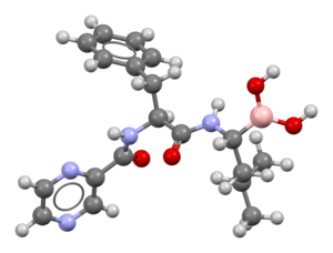 Bortezomib-based-on-PDB-2F16-Mercury-3D-balls.png