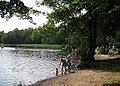 Bosarpasjöns badplats 2010.jpg