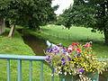 Bossus-lès-Rumigny (Ardennes) le Thon.JPG