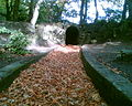 Botanic Gardens Small Tunnel October 2008.jpg