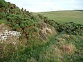 Boundary of open country above East Combe - geograph.org.uk - 1719510.jpg