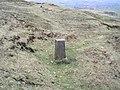Boundary stone - geograph.org.uk - 370496.jpg