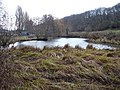 Boxley mill pond - geograph.org.uk - 101877.jpg