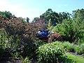 Bressingham Steam and Gardens 16.jpg