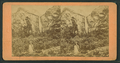 Bridal Veil Fall, 940 feet high, Cal, from Robert N. Dennis collection of stereoscopic views.png