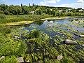 Bridge of Love (Boguslav, Ukraine) Міст кохання (Богуслав, Україна) (50170176906).jpg