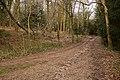 Bridleway enters woodland below B3035 - geograph.org.uk - 1774761.jpg