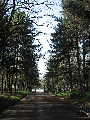 Bubanj Memorial Park - Image: Bubanj Staza 2