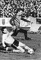 Bundesarchiv Bild 183-1987-0314-015, Dynamo Dresden - BFC Dynamo 3-2.jpg