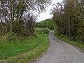Buninvar Road - geograph.org.uk - 1543418.jpg