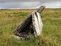 Burren - near Green Road - Wedge Tomb - panoramio (1).jpg