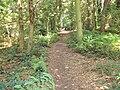 Burton Wood footpath 1.JPG