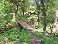 Bute, Foot Bridge to Chambered Cairn - geograph.org.uk - 182553.jpg