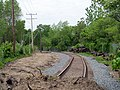 Buttonwoods Branch west of Mill Street, May 2017.JPG
