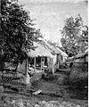 COLLECTIE TROPENMUSEUM Woningen in een kampong TMnr 60004288.jpg