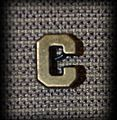 C Device.jpg