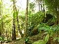 Cabeça de pedra no mato, Kinkaku-Ji - panoramio.jpg