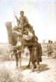 Camel riding in Shah Abad.png