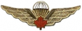 Canadian jump wings.png