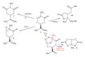 Carvone oxidation.png