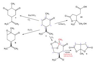 Carvone - Various oxidations of carvone