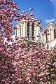 Cathedrale Notre Dame Paris.jpg