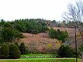 Cedar Bluff - panoramio.jpg