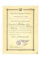 Certificato di abilitazione a torpediniere.pdf