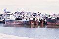 Chalutiers de pêche industrielle.jpg