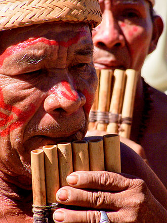 Tribe - A shaman from a tribe in the Venezuelan Amazon playing a siku