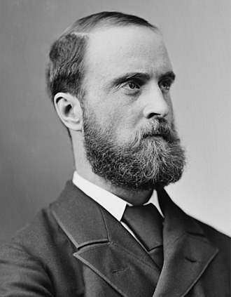 1885 United Kingdom general election - Image: Charles Stewart Parnell (Portrait)