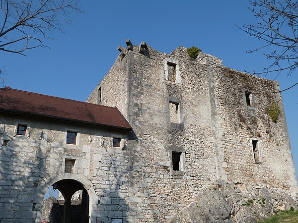 Photo de la ville Cressin-Rochefort