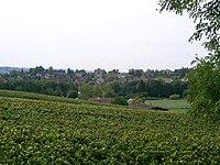 Cheilly-lès-Maranges.JPG