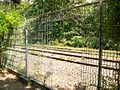 Chemin de fer de Petite Ceinture - fence.jpg
