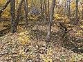 Cherkas'kyi district, Cherkas'ka oblast, Ukraine - panoramio (374).jpg