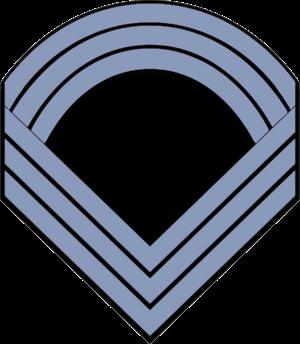 Charles E. Nash - Image: Chevrons Infantry Sergeant Major CW