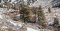 Chewaucan River Canyon (32497299633).jpg