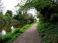 Chichester canal - geograph.org.uk - 1287768.jpg