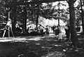 Children playing on swings, probably at Bloedel-Donovan Lumber Mills employees picnic, ca 1922-1923 (INDOCC 1110).jpg
