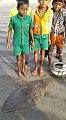 Children standing behind a stingray, 2002.jpg